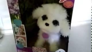 Интерактивный пес FurReal Friends Playful Pets, My Jumpin Poodle от компании 4 сезона - видео