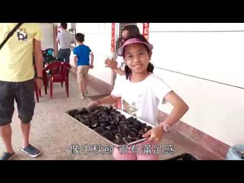 台南七股柳營鄉村活力小旅行 - 南部開講