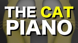 The Cat Piano | Morose Delectation and Music