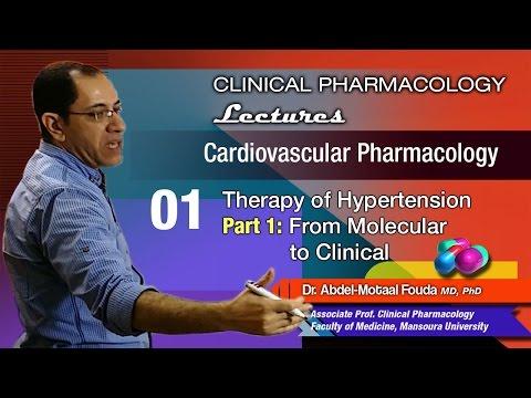 Histori mjekësor i terapisë sëmundjes hypertensive