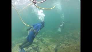 Baja Blue Diver Hose Dive for firts time diver