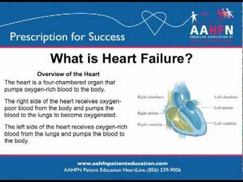 הדרכה לגבי אי ספיקת לב