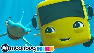 Buster In The Ocean   Cartoons and Kids Songs   Go Buster   Nursery Rhymes For Kids