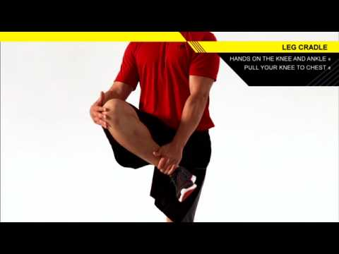 【股関節の可動域向上】太ももを高く引き上げるダイナミックストレッチ「レッグクレイドル」