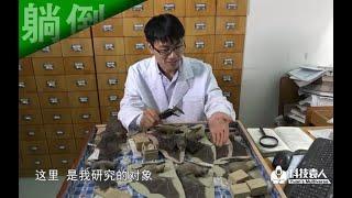 ❌躺倒大自然:我就是研究蝙蝠的,研究了八年了...还被咬过很多次...... 刘奇