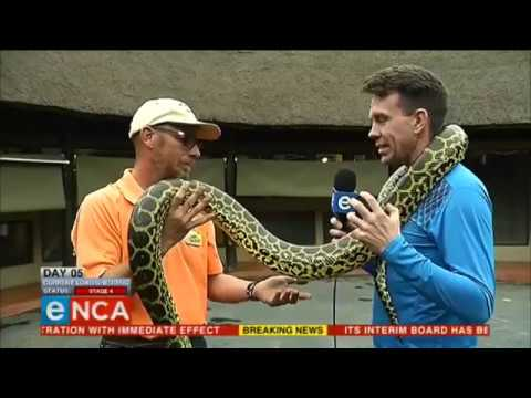 12 Days of crazy with eNCA reporters