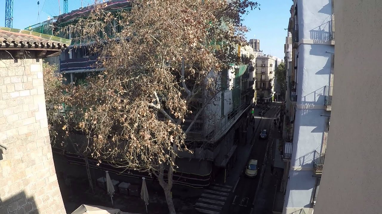 Stylish room with standalone wardrobe in shared apartment, El Raval