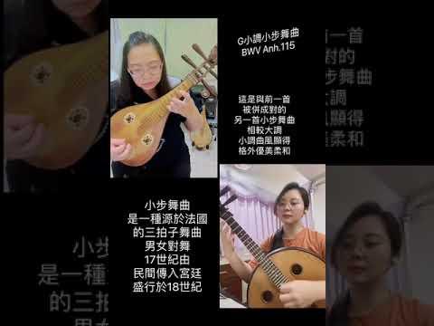 【表藝如果電話亭】臺南市民族管絃樂團—柳琴&中阮 遠距二重奏