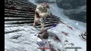 Skyrim Mixed Enhanced Physics - Force and Projectiles 1.1