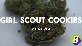 Girl Scout Cookies - Reseña De Variedad De Cannabis