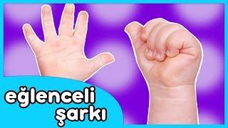 Ellerim Tombik Tombik - Eğlenceli Çocuk Şarkısı