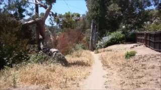 A mellow ride on Valmonte Trail