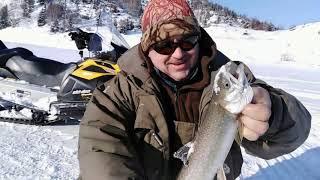 Сахривер отчеты о рыбалке май 2020