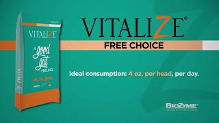 Vitalize® Equine Free Choice