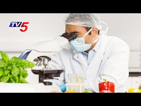 Food Science And Nutrition Courses | Southern International l ...