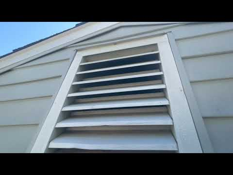 Preventing Hornets and Nuisance Wildlife from Infesting this Home in Wannamassa, NJ