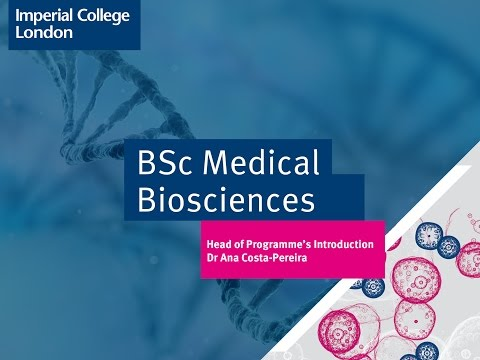 BSc Medical Biosciences | Study | Imperial College London