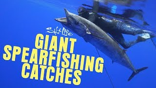 5 Giant Spearfishing Catches | Salt Life