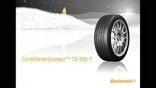 ContiWinterContact TS 830 P - CZ