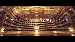 Moon Flower Symphony ® YouTube - Facebook