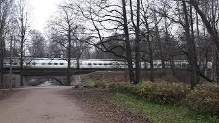 Обновленный поезд Аллегро в Удельном парке