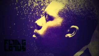 Flying Lotus   Fall In Love
