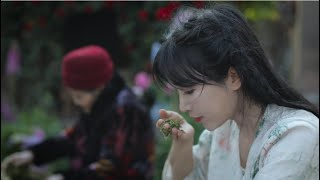 Video : China : Tea - not just a drink, but a lifestyle