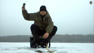 На рыбалку в русичи калужская область