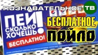 Заметки: Бесплатное пойло - пей, сколько хочешь! (Познавательное ТВ, Артём Войтенков)