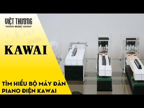 Bộ máy đàn piano Kawai Digital
