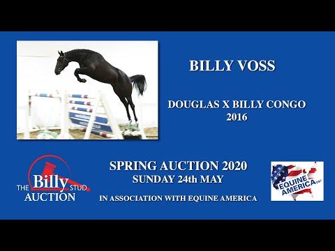 Billy Voss
