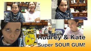 Audrey & Kate Try SUPER SOUR Gum - オードリー&ケイト超すっぱいレモンガム