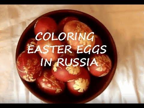Красим яйца.  Прикольный десерт.  DIY.