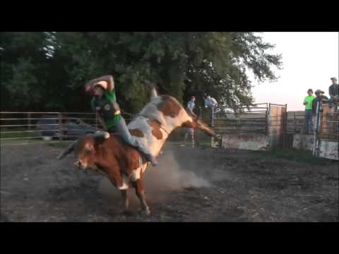 Download Practice Pen 8-25-13 (Bull Riding) HD Mp4 3GP Video and MP3