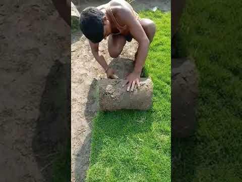 Graden Natural Grass