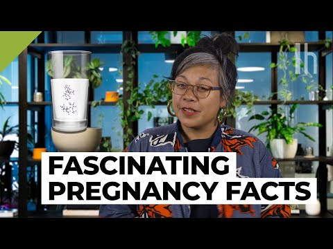 What Nobody Tells You About Pregnancy