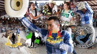 !! LA ULTIMA MONTA DEL DESOBERIENTE DE CHERAN EN USA !!