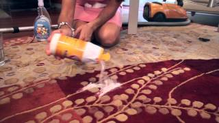 What Can You Put on the Carpet to Keep Dogs From Going to the Bathroom There? : Dog Care Tips