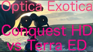Zeiss Conquest HD vs Terra ED #48