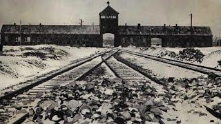 В. В. Пякин_Почему Гитлер устроил ХОЛОКОСТ евреев?