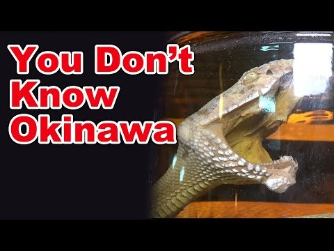 What is Awamori?   English Sub   Okinawan best souvenir   Awamori