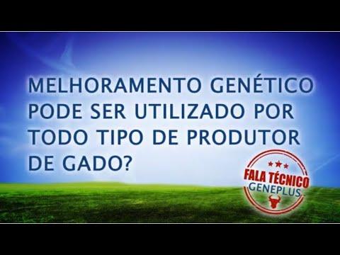 Fala Técnico Melhoramento Genetico