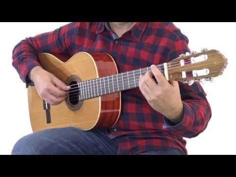 ORTEGA R200 Klasická kytara