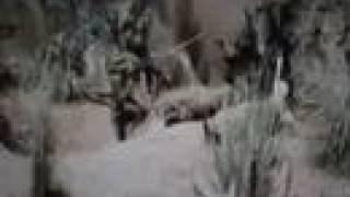 Avenged Sevenfold - Strength Of The World  (Music Video)