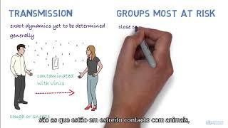 Informação sobre o Coronavírus (COVID-19)