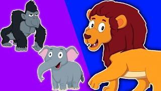 животное звук песня | Дети рифмы | детский стишок | Animal Sound Song | Kids Rhyme | Baby Song