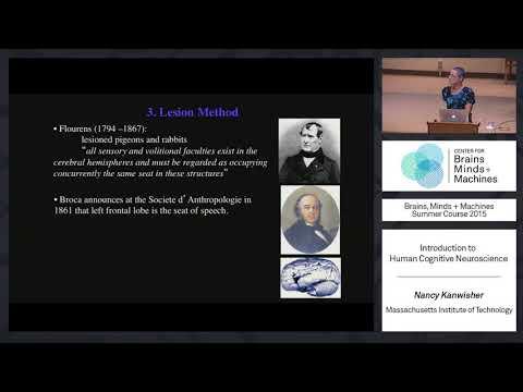 Lecture 1.1: Nancy Kanwisher - Human Cognitive Neuroscience ...