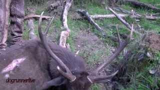 Chris's September stag