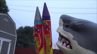 Sharks vs Bottle Rockets 'Toy Shark Lighting Fireworks'