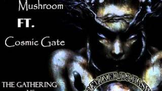 Infected Mushroom Ft. Cosmic Gate   The Gathering Vs. Running Out Of Time [Remixed_Dj.Hash].wmv